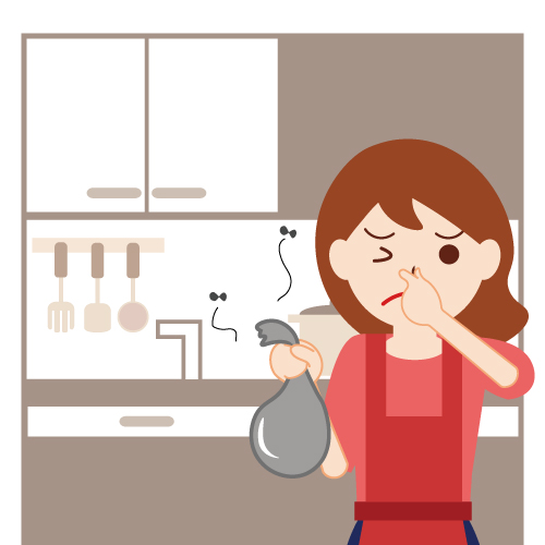 台所のコバエ